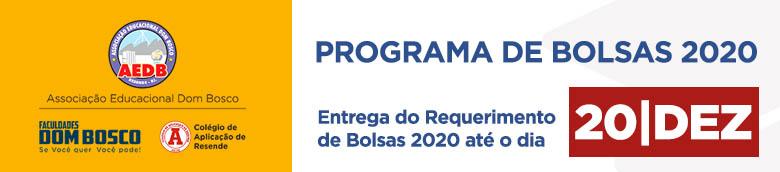Topo-requerimento-bolsas 2020